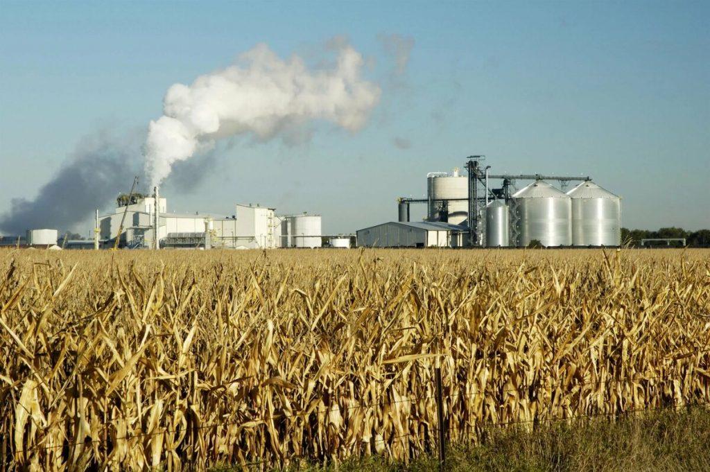 Пищевая промышленность и объекты животноводства